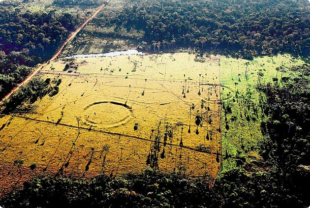 A previously unknown ancient civilization discovered in the amazon sciox Image collections