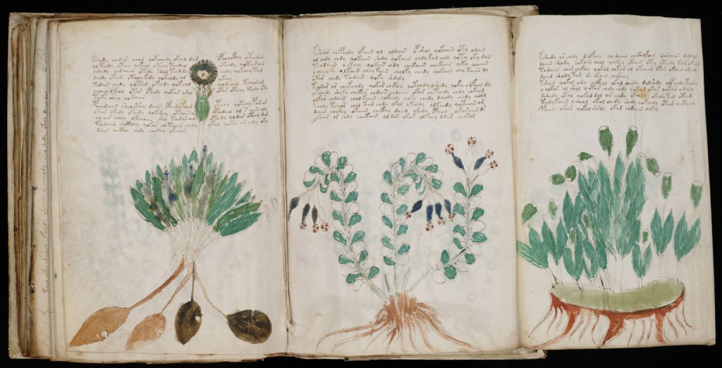 Has AI Cracked The Code In The 'World's Most Mysterious Book' The Voynich Manuscript? 03-voynich-manuscript