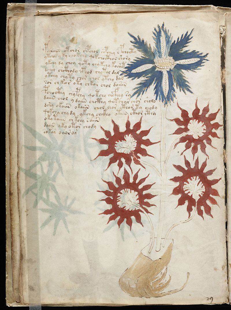 Has AI Cracked The Code In The 'World's Most Mysterious Book' The Voynich Manuscript? Voynich_Manuscript_32